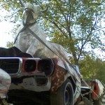 Cow Driving a Firebird Front