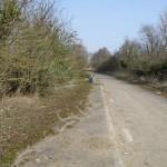 abandonedroads8
