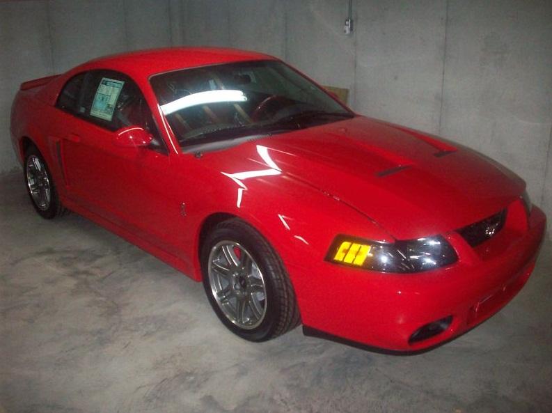 Brand New 2000 Mustang Cobra R And 2003 Cobra Svt On Ebay
