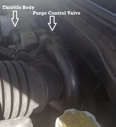 location of purge control valve behind the throttle body