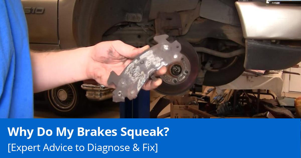 Why do my brakes squeak