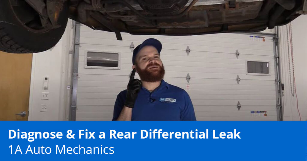 Mechanic showing rear differential leak